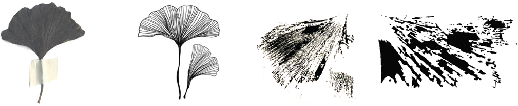 La recherche pour la création Logo aînés de Tournai. Quelques éléments graphiques inspiré par la nature.