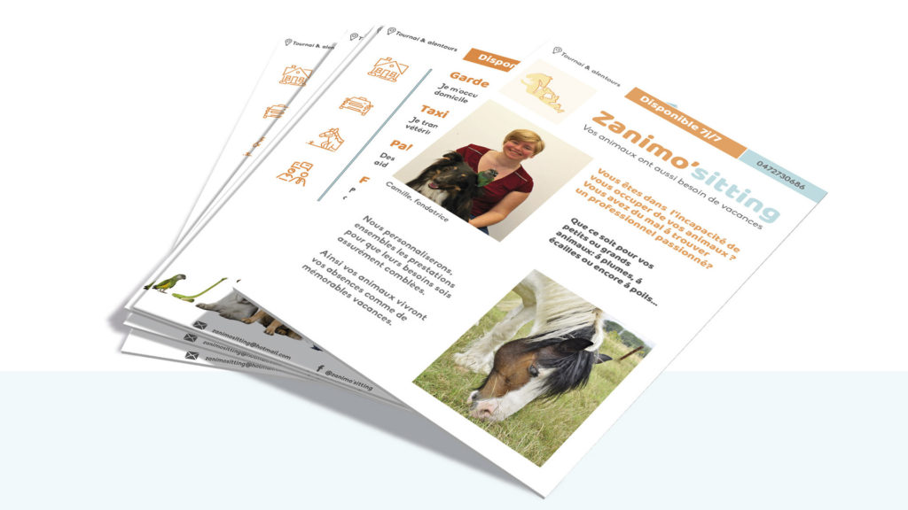 Flyer and brochure design pet-sitting